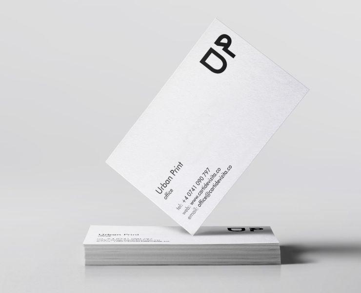 Carti de vizita carton