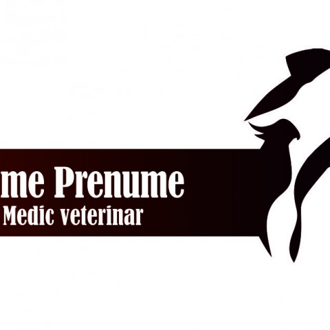 veterinar 02a fata